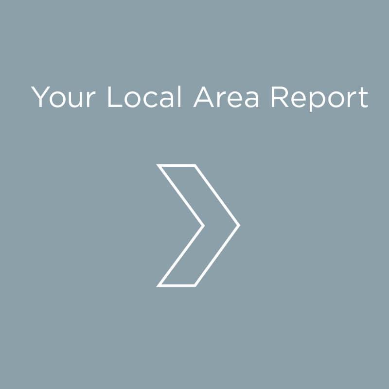 Local Area Report