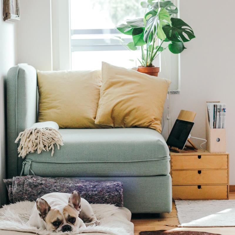 Spring Clean - Living Room 1.jpg