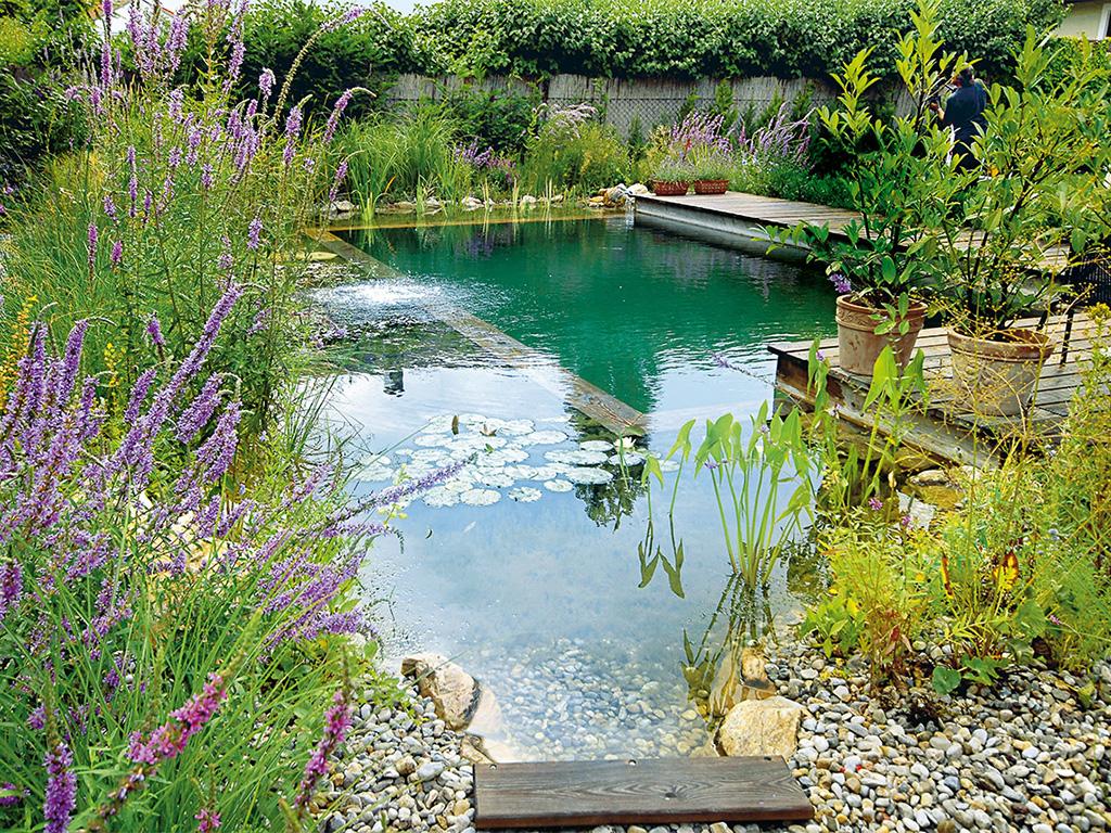 natural-pool.jpg